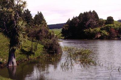 Lake Eland (Hawke's Bay)