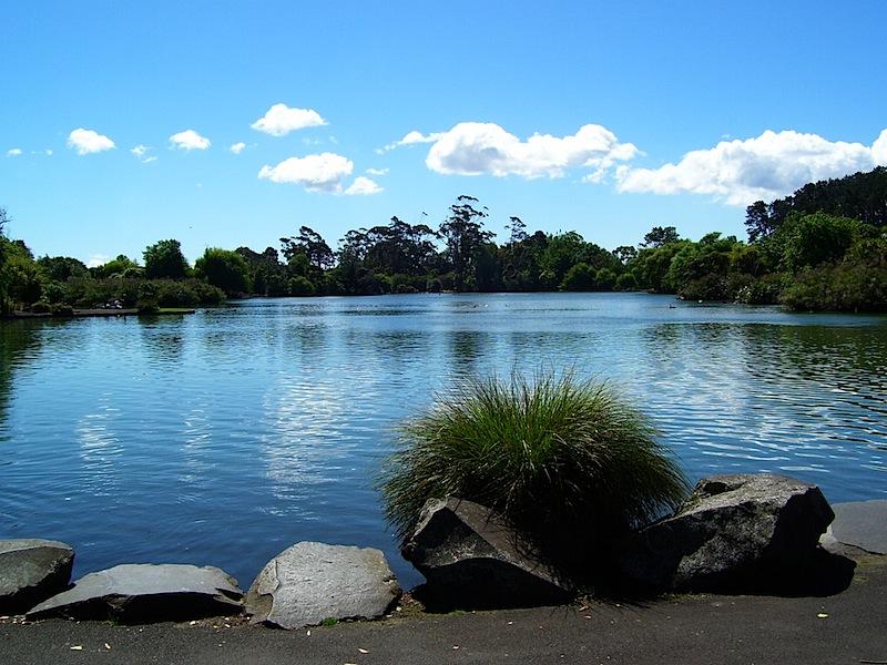 Western Springs Lake Restoration